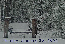 Picnic Table Snow Cam